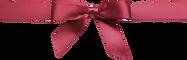 transparent-bow-tie-5ddbb4e5e8f400.71766