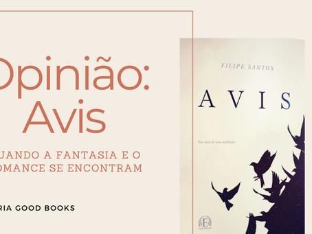 Blind Date with a Book de fevereiro: quando a fantasia e o romance se encontram