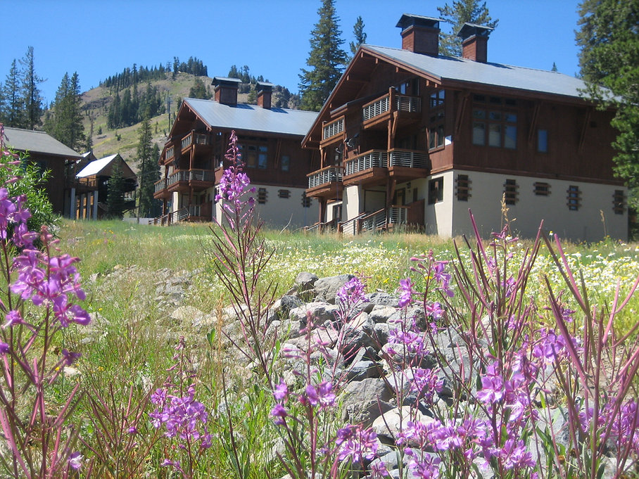 4-Sugar Bowl chalet + Meadows 006.jpg