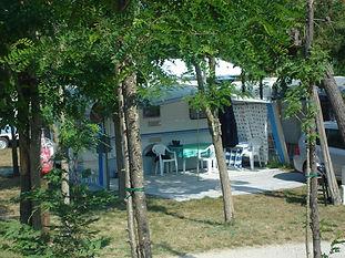 International Camping Pineta