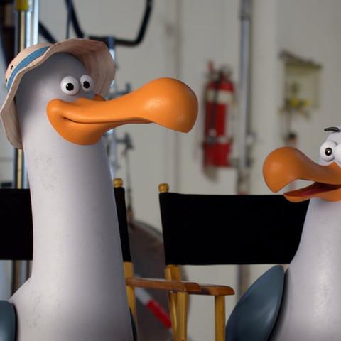 Captain D's 'Meet the D-Gulls'