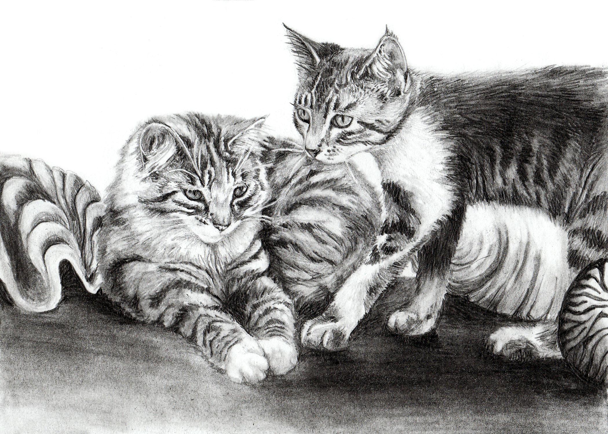 Roxxy & Lila.jpg