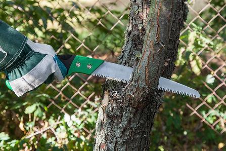 Arbortech Tree Trimming