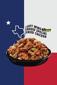 Left Wing Texas