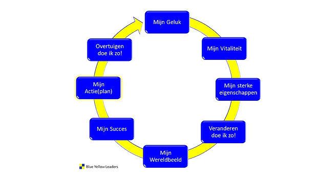 Persoonlijk Leiderschap Groeimodel Blue Yellow Leaders