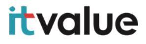Logo IT Value.JPG