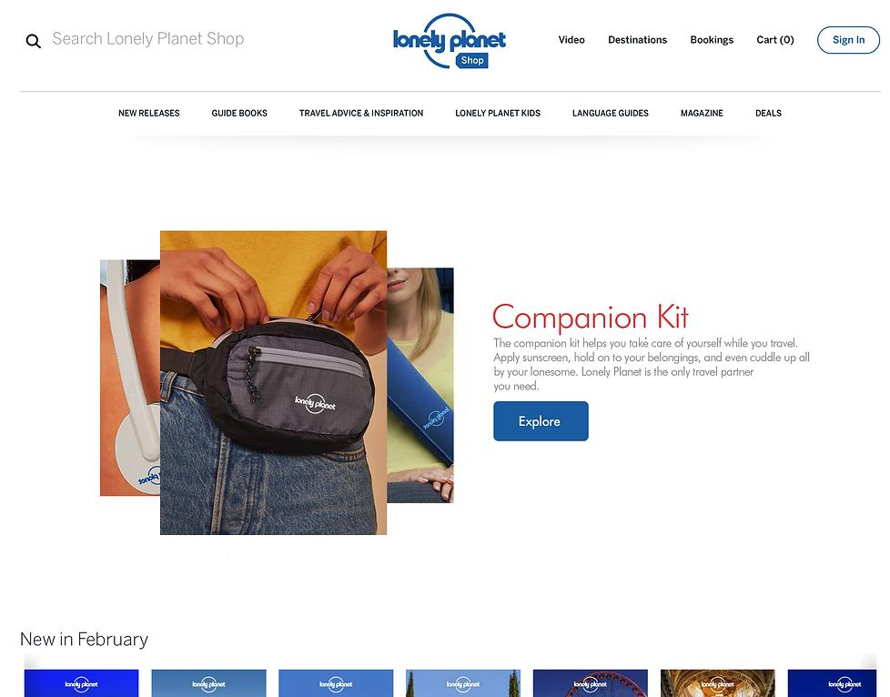 Landing Page_Companion Kit.png