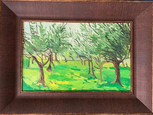 Olive Grove 11 x 17
