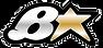 brians_logo-300x141.png
