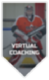 virtualcoaching.png