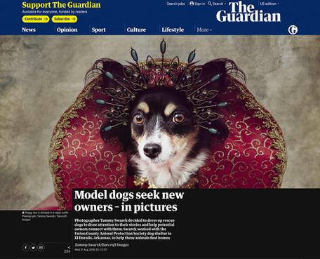 Tammy Swarek - The Guardian