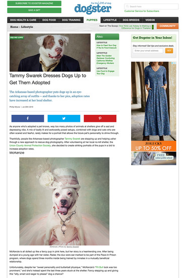 Tammy Swarek - Dogster Magazine