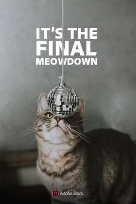 meowdown1.jpg