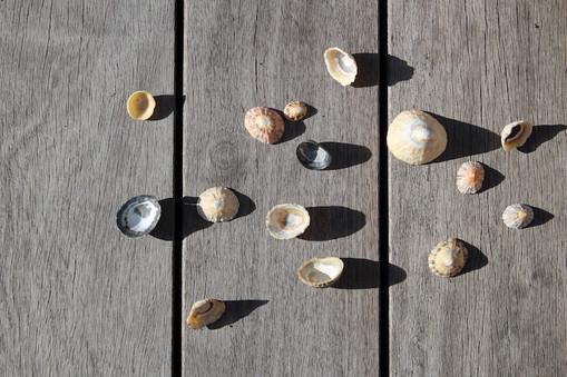 sur-la-plage-abandonnee-lux-ceramique3.J
