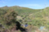 brana-robles.jpg