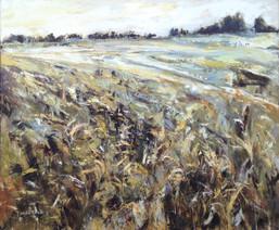 Wheat & Wind