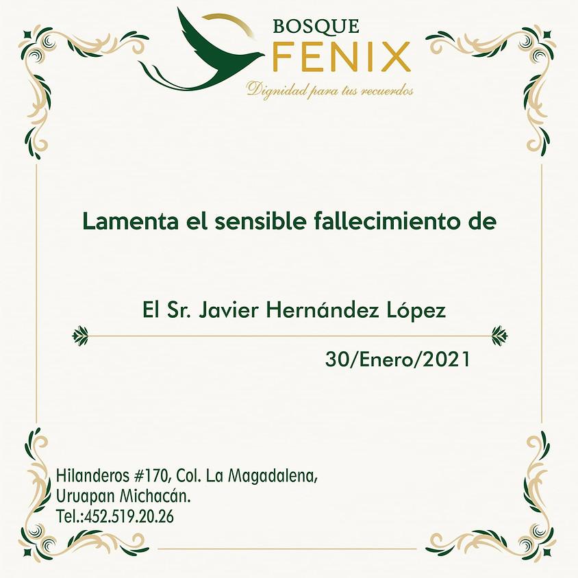 El Sr. Javier Hernández López
