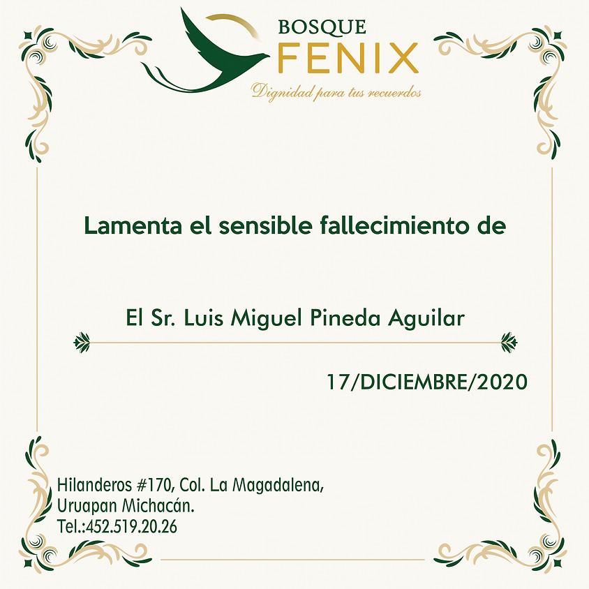 El Sr. Luis Miguel Pineda Aguilar