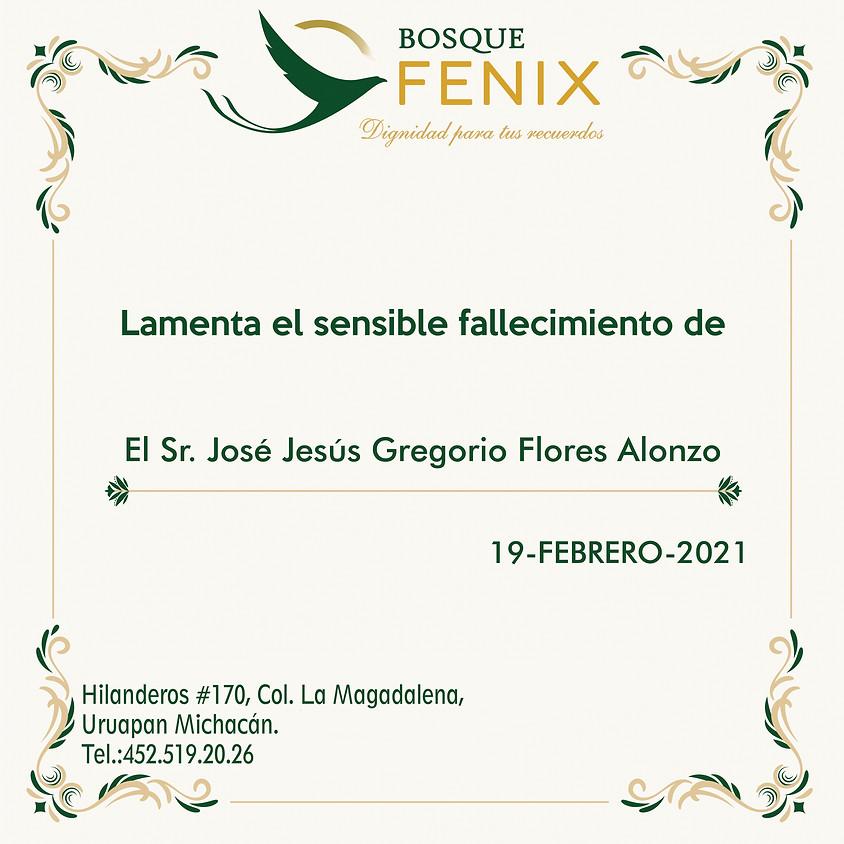 El Sr. José Jesús Gregorio Flores Alonzo