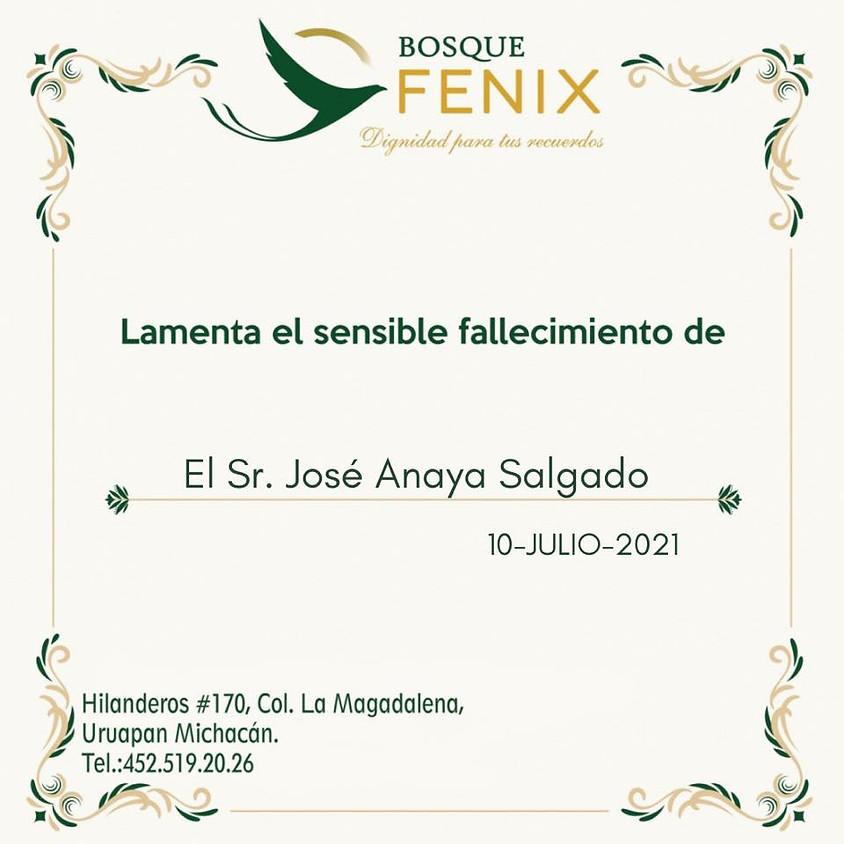El Sr. José Anaya Salgado