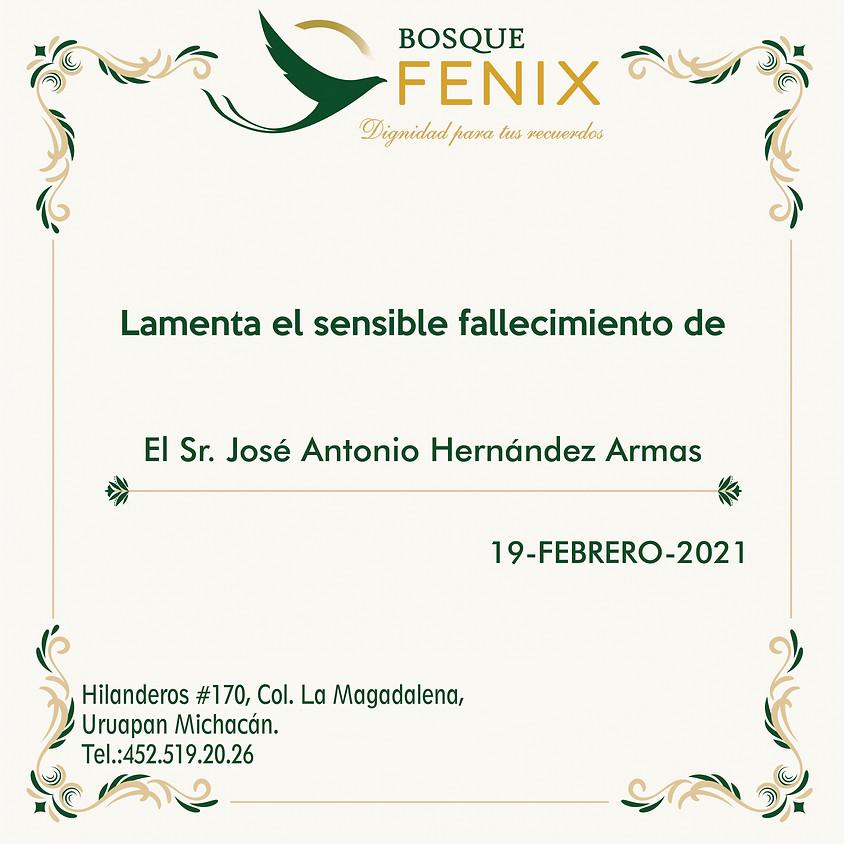 El Sr. José Antonio Hernández Armas