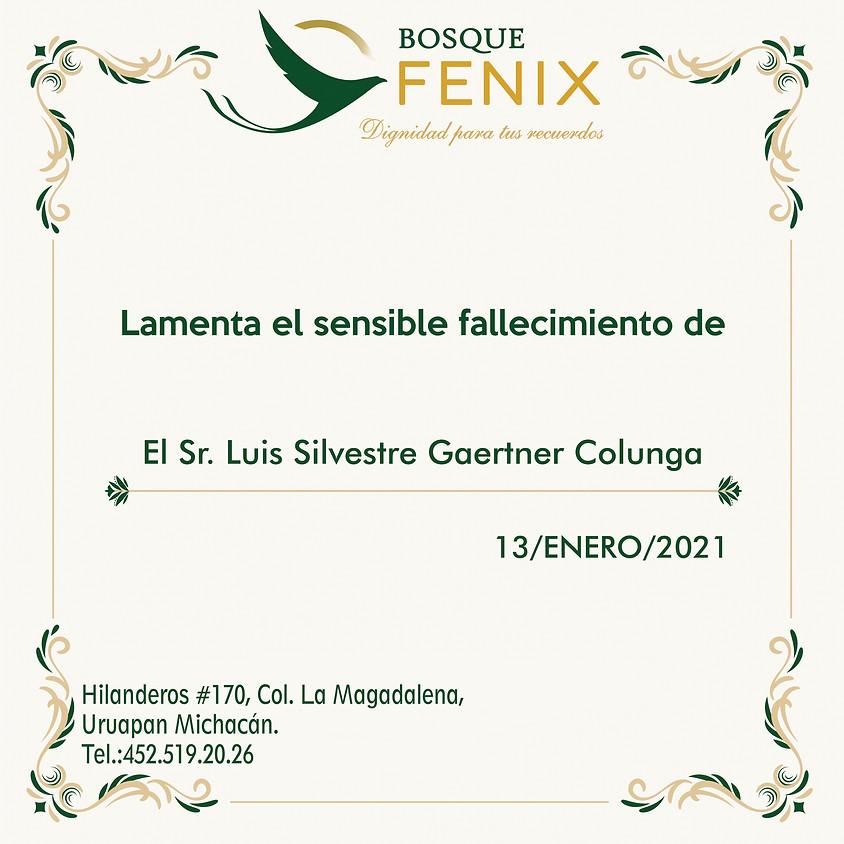 El Sr. Luis Silvestre Gaertner Colunga