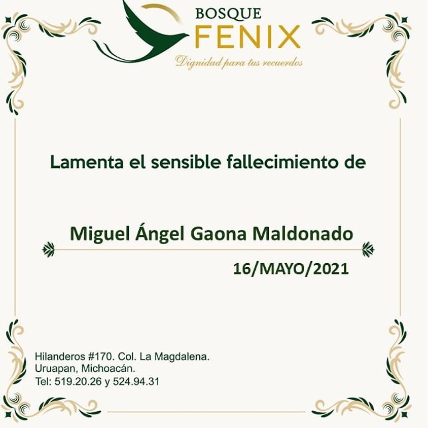 Miguel Ángel Gaona Maldonado