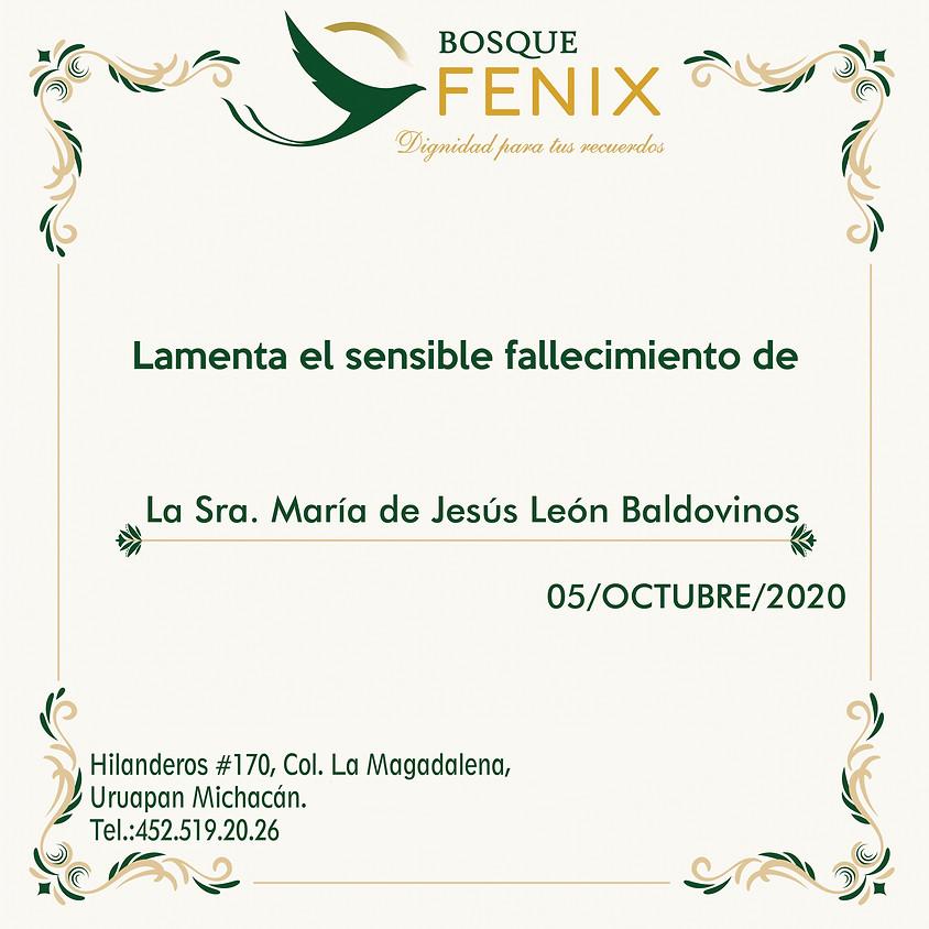 María de Jesús León Baldovinos