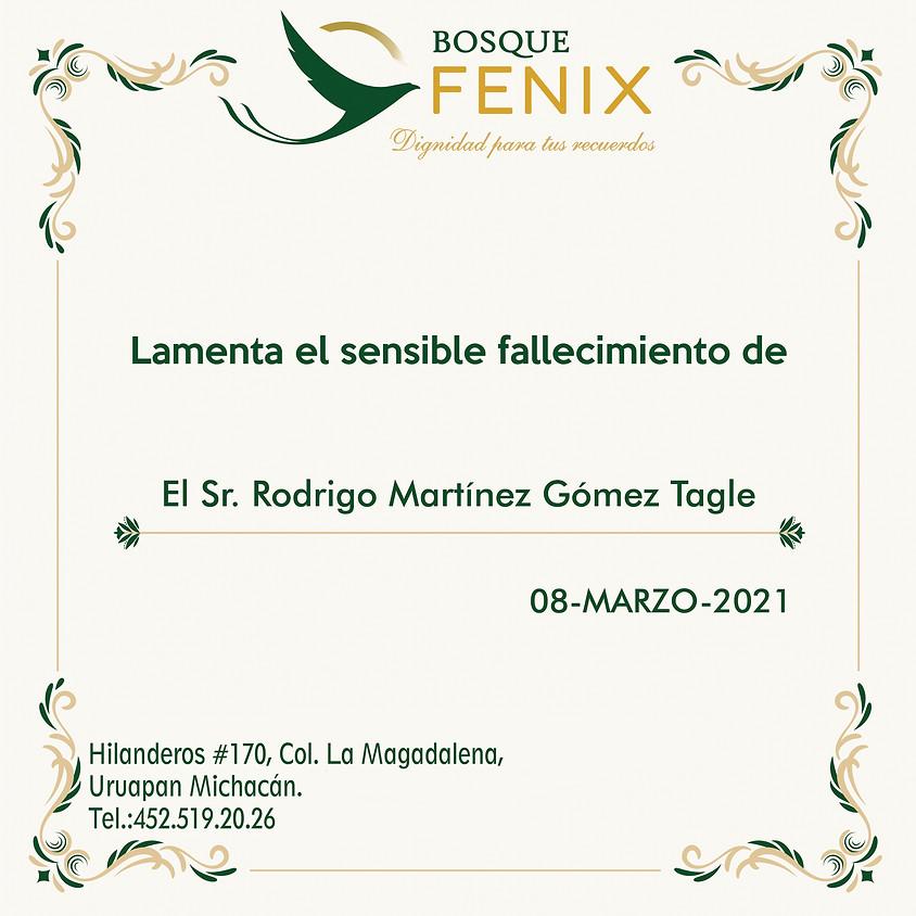 El Sr. Rodrigo Martínez Gómez Tagle