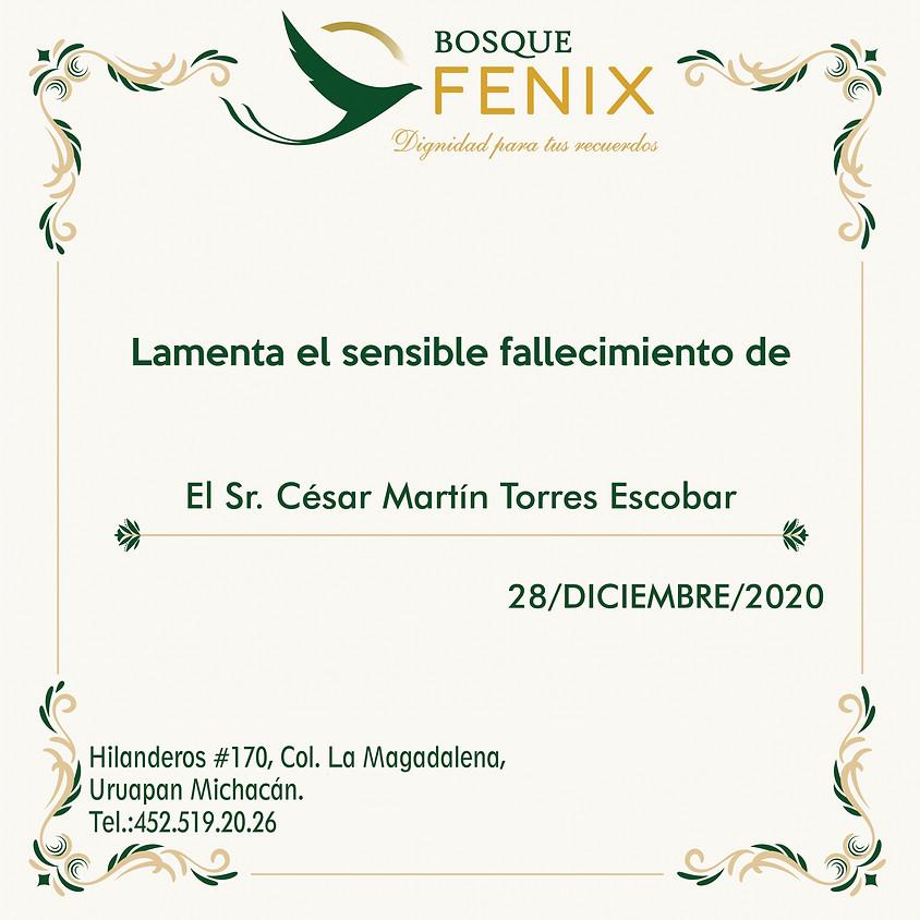 El Sr. César Martín Torres Escobar