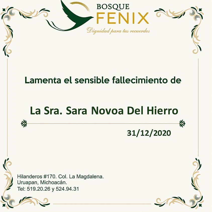 La Sra. Sara Novoa Del Hierro