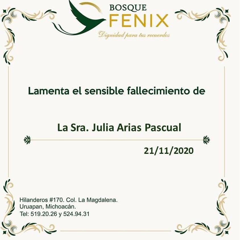La Sra. Julia Arias Pascual