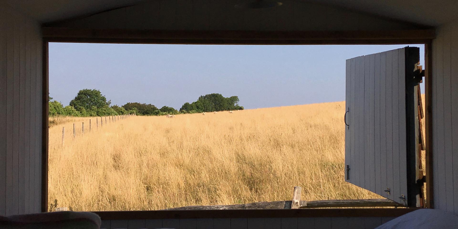 View like a postcard
