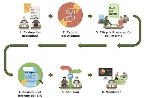 PP Process.jpg
