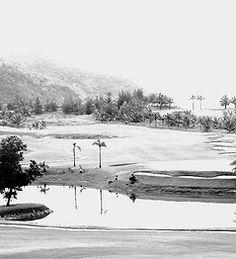 Golf%25252520Course_edited_edited_edited