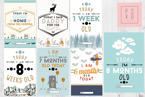 Mixture Adventure Themed Baby Boys Milestone Cards