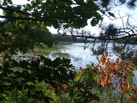 Drummond Islanders (Part 3:The Beausoleil's)