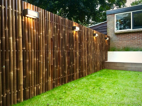How To Take Care Of Your Bamboo Fence
