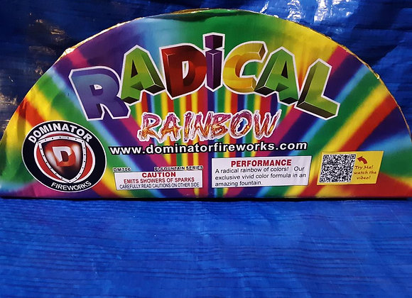 RADICAL RAINBOW WITH FINALE