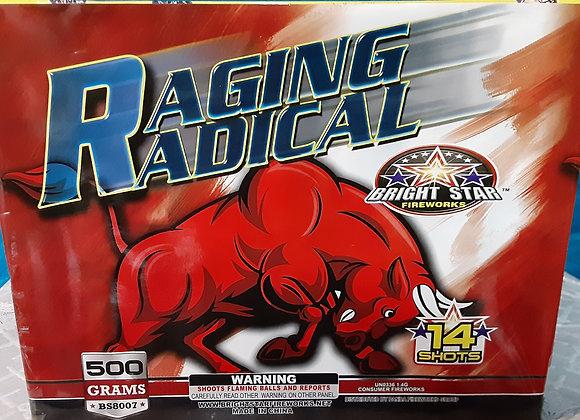 RAGING RADICAL