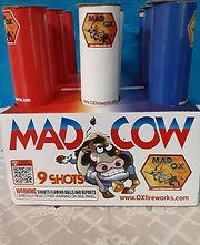 mad cow.jpg