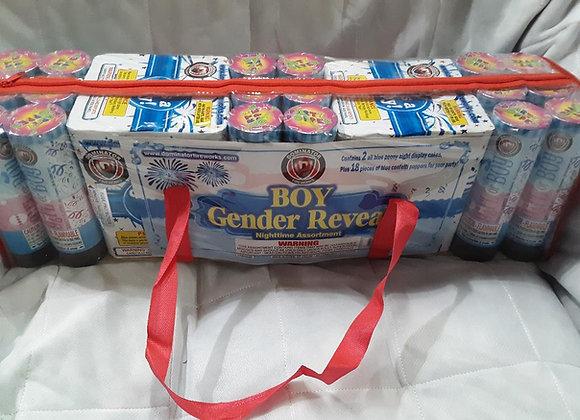 GENDER REVEAL NIGHTTIME BOY