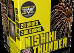 NISHIKI THUNDER 20 SHOT