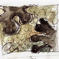 Rockpool Sketch