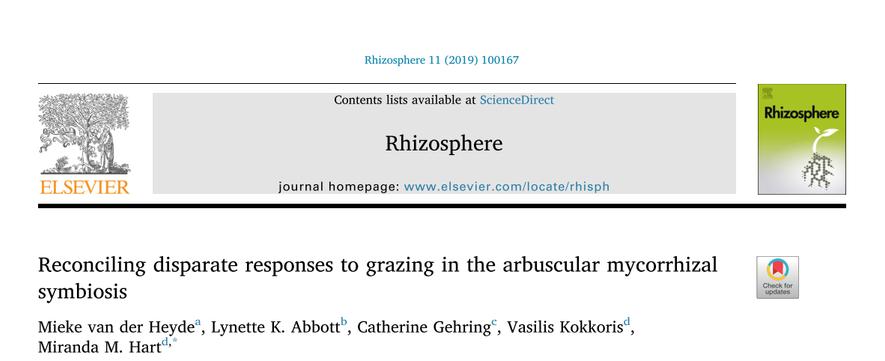 Rhizosphere_209.png
