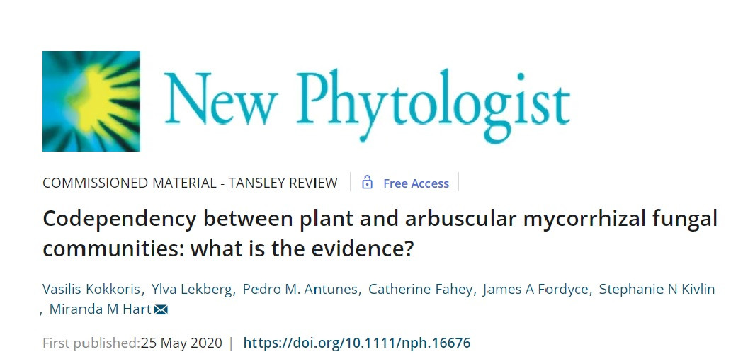 Codependency between plant and arbuscular mycorrhizal fungal communities: what is the evidence?
