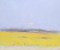Mustard Field at Dusk