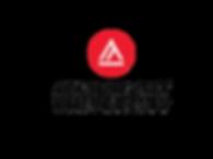 AAU logo.png