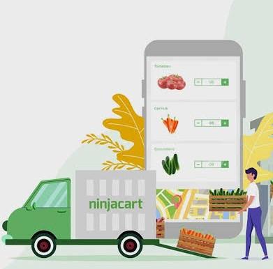 Walmart, Flipkart Invest An Undisclosed Amount In Ninjacart