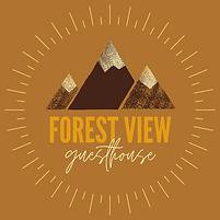 FV Logo final FV.png